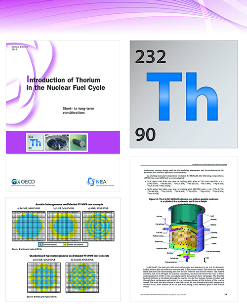Introduction of Thorium in the Nuclear Fuel Cycle