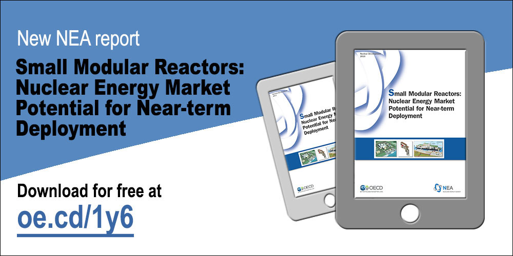 Small Modular Reactors: Nuclear Energy Market Potential for Near-term Deployment