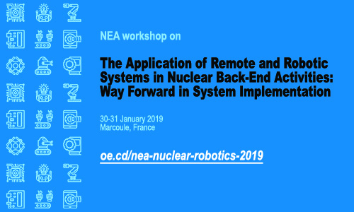 The application of remote and robotic systems in nuclear back-end activities, January 2019