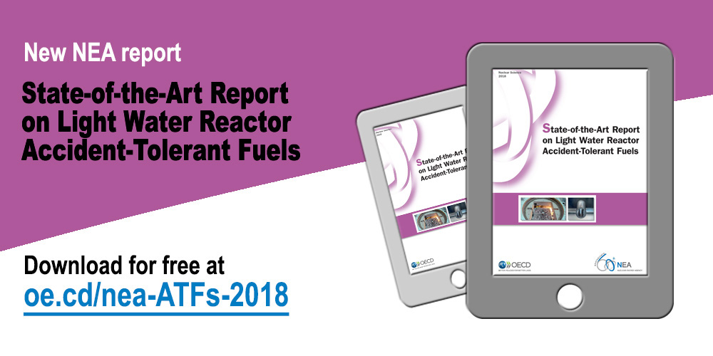 State-of-the-Art Report on Light Water Reactor Accident-Tolerant Fuels