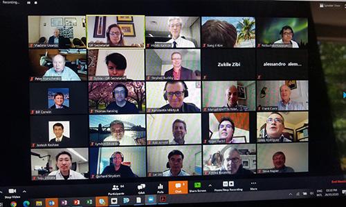 Generation IV International Forum (GIF) meetings, May 2020