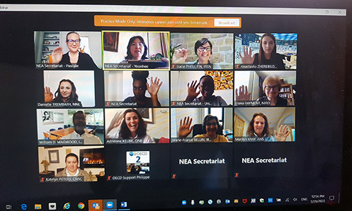 Web discussion on gender balance in nuclear, May 2020