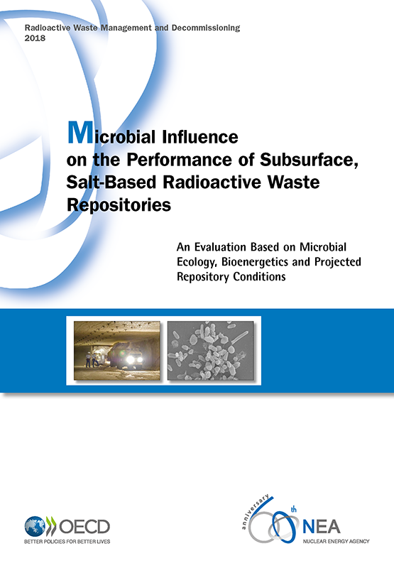 Microbial Influence on the Performance of Subsurface, Salt-Based Radioactive Waste Repositories