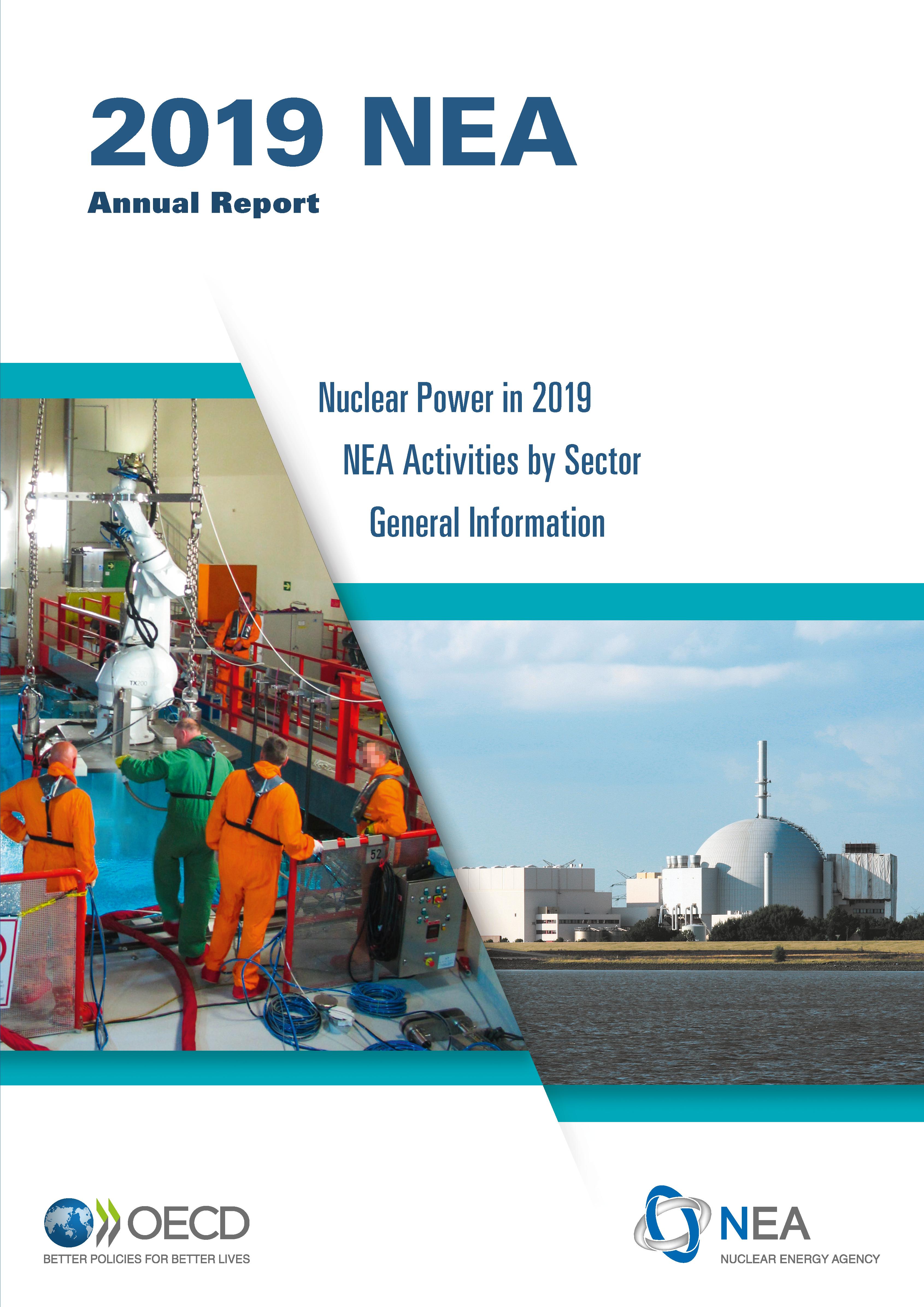 NEA Annual Report 2019