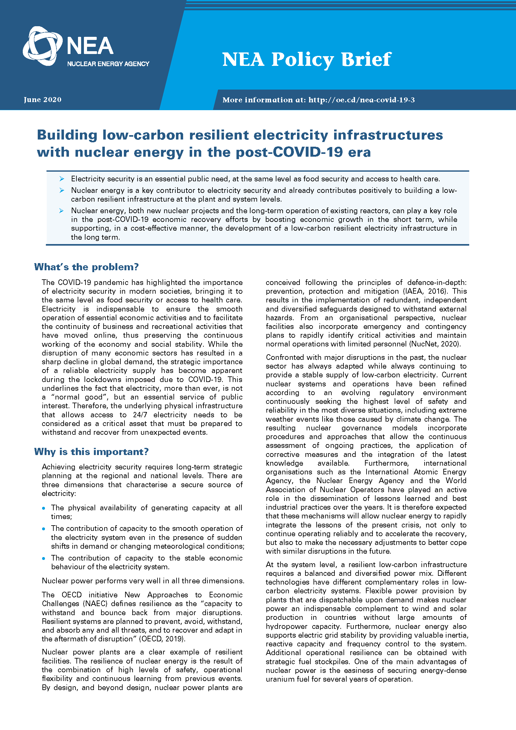 Building low-carbon resilient electricity infrastructures