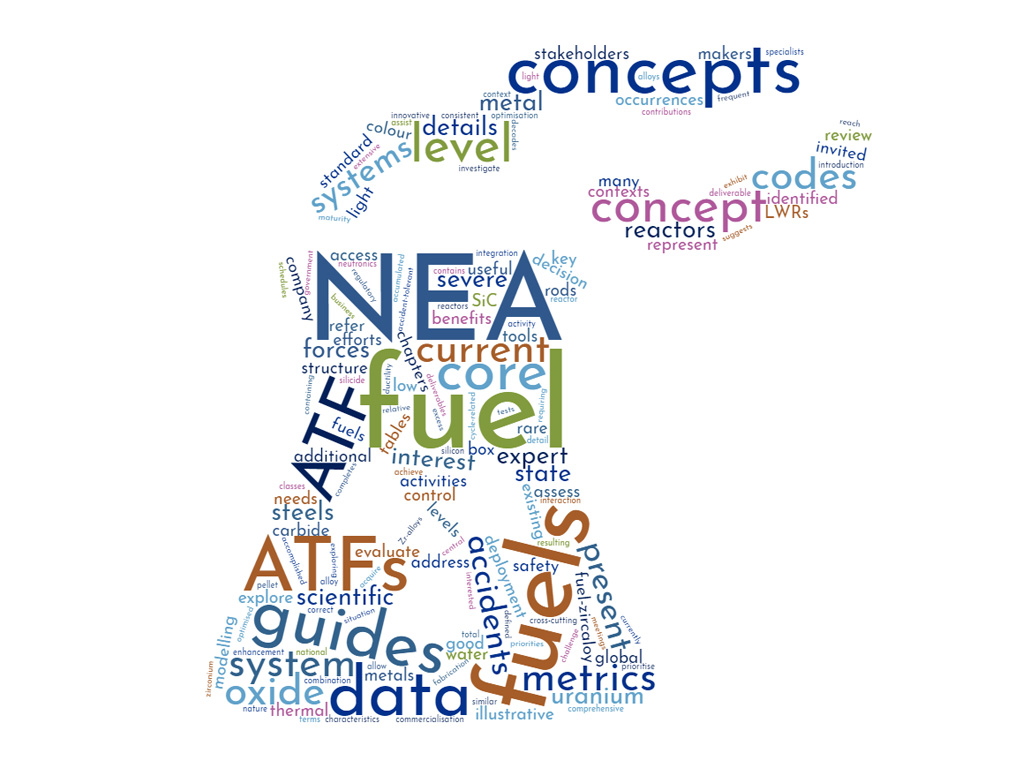 NEA State-of-the-Art Report on Light Water Reactor Accident-Tolerant Fuels
